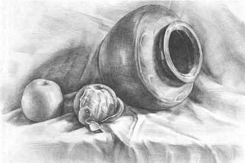 罐子桔子苹果静物素描步骤图片